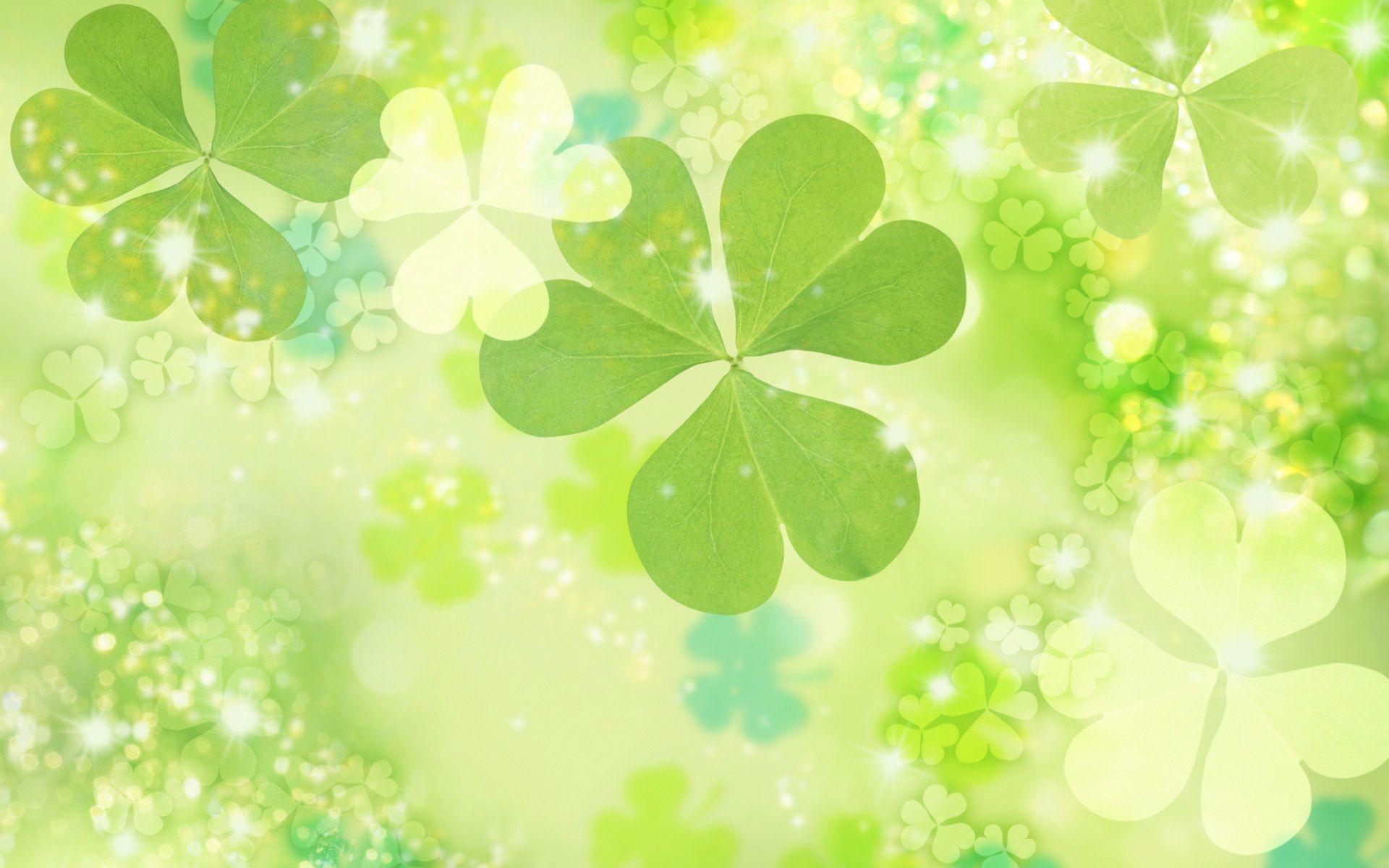 Phông nền màu xanh của cỏ bốn lá tình bạn