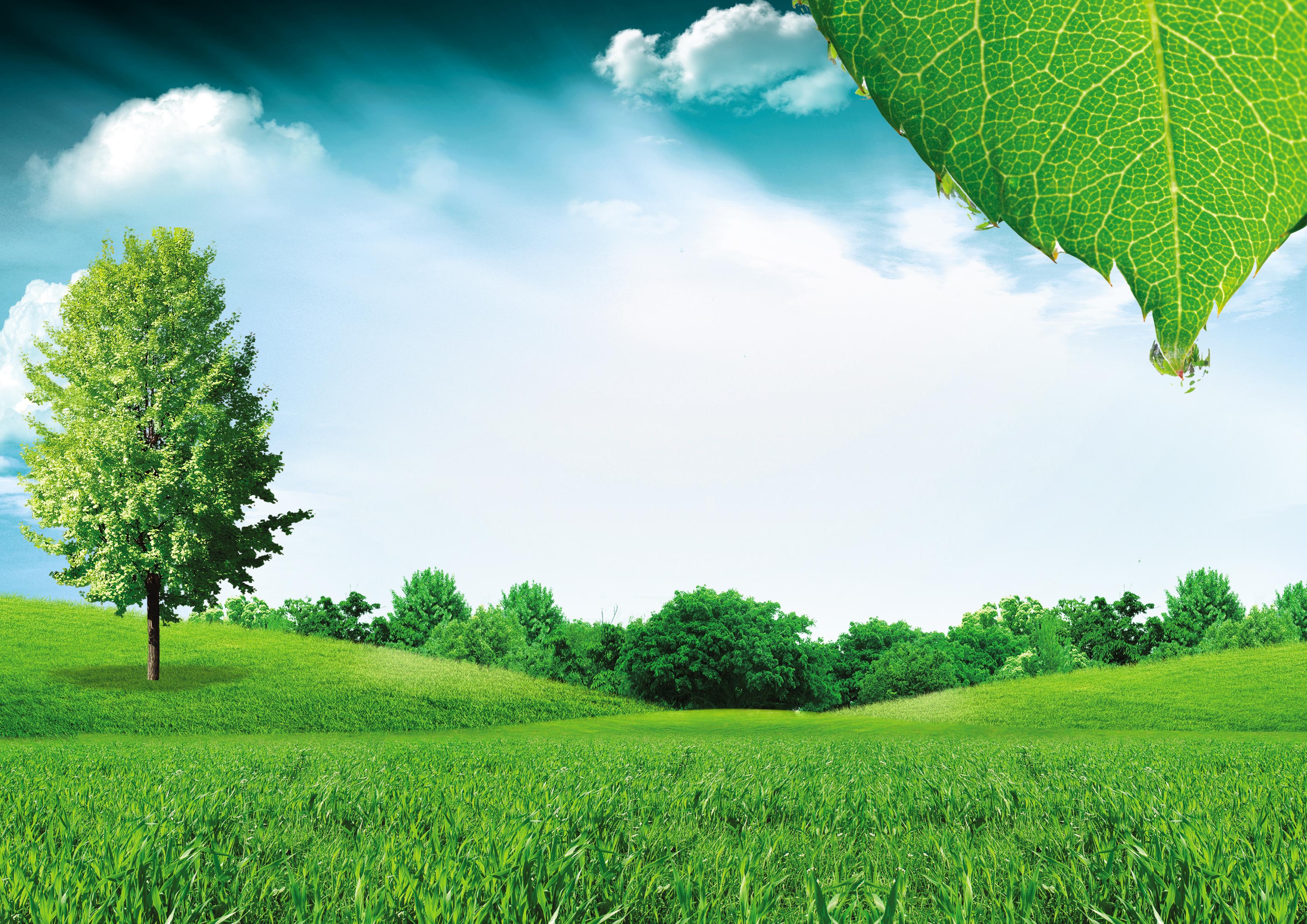 Thiên nhiên luôn ưu ái ban trặng cho chúng ta những phôn nền màu xanh tuyệt mỹ