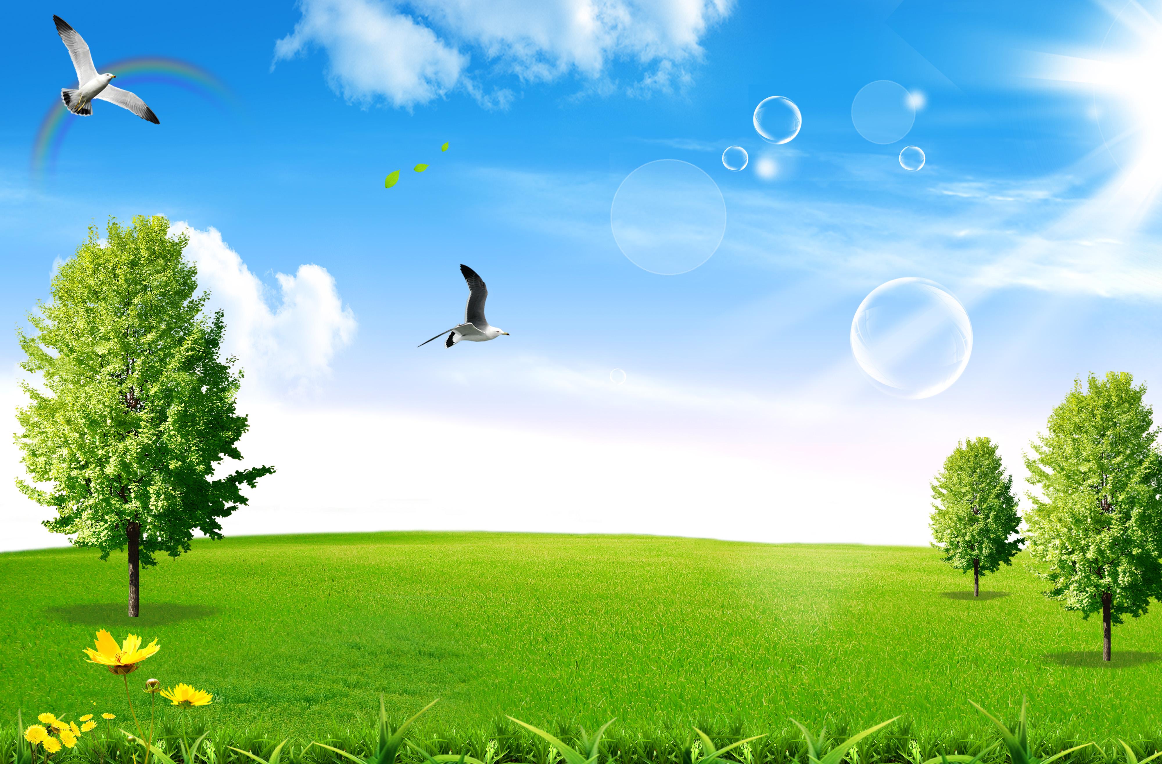 Màu xanh ngát của phồng nền tạo cảm giác yên bình