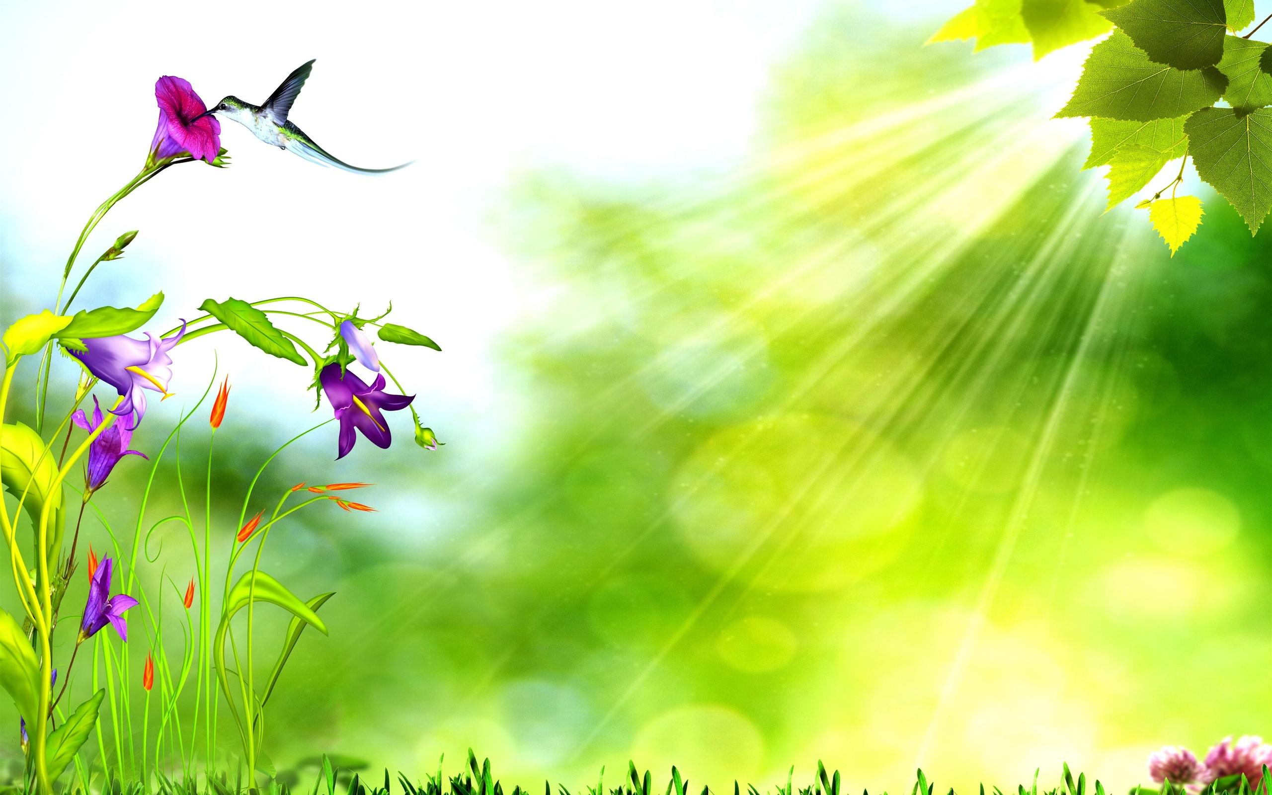 Nghệ thuật với phông màu xanh lá cây